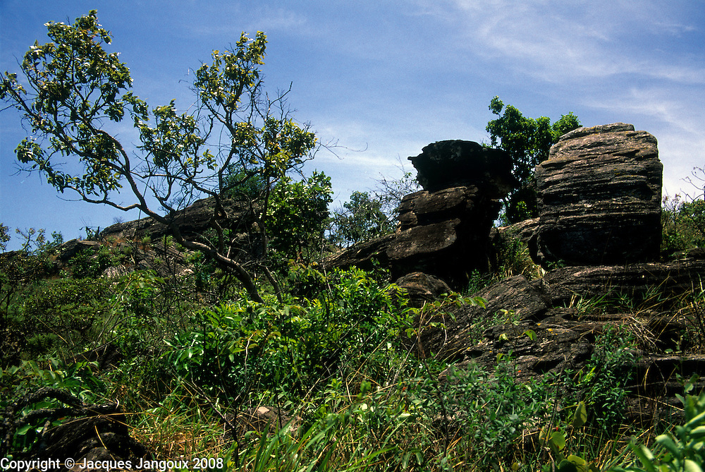 Rocks with cerrado vegetation (wooded savanna) in Parque Estadual (State Park) dos Pireneus, Brazilian Highlands, Goiás, Brazil