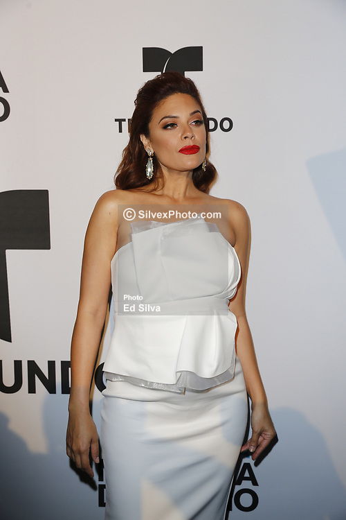 LOS ANGELES, CA - JUNE 26: Angelica Celaya arrives for the Screening Of Telemundo's 'Jenni Rivera: Mariposa De Barrio' at The GRAMMY Museum on June 26, 2017 in Los Angeles, California. Byline, credit, TV usage, web usage or linkback must read SILVEXPHOTO.COM. Failure to byline correctly will incur double the agreed fee. Tel: +1 714 504 6870.