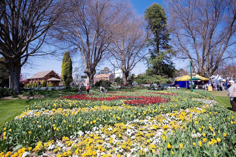 Tulip Time Festival, Corbett Gardens, Bowral, Australia