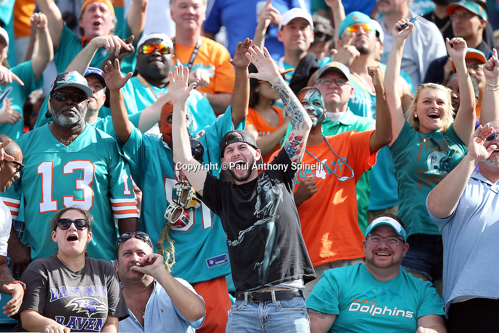 Miami Dolphins fans cheer for the team during the Miami Dolphins 2015 week 13 regular season NFL football game against the Baltimore Ravens on Sunday, Dec. 6, 2015 in Miami Gardens, Fla. The Dolphins won the game 15-13. (©Paul Anthony Spinelli)