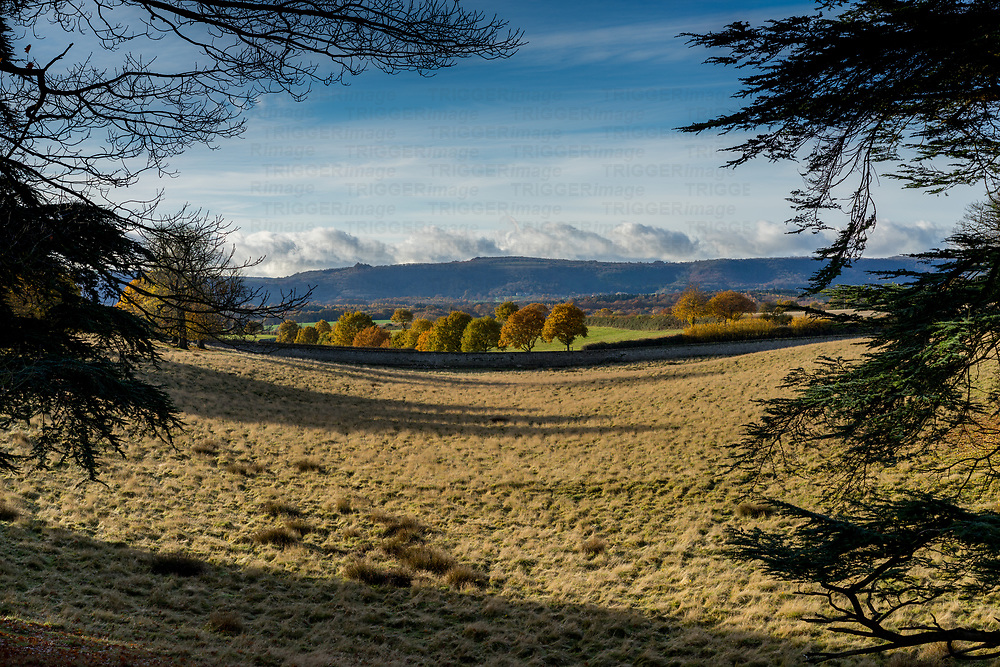 Rural landscape of the West Sussex Downs from Petworth Park