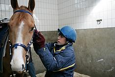 Van den Troost Toon 2006
