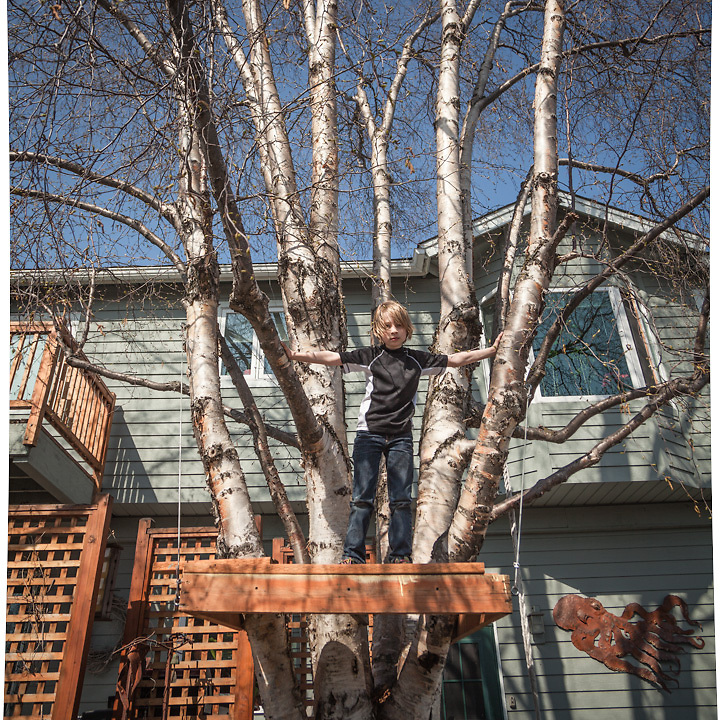 """William Cleland (9) in his yard in Anchorage's South Addition neighborhood.  """"We're rebuilding our tree house.  This is as far as we have gotten."""""""