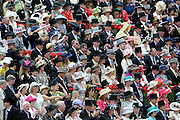 © Licensed to London News Pictures. 19/06/2012. Ascot, UK  Day one at Royal Ascot 19 June 2012. Royal Ascot has established itself as a national institution and the centrepiece of the British social calendar as well as being a stage for the best racehorses in the world.. Photo credit : Stephen Simpson/LNP