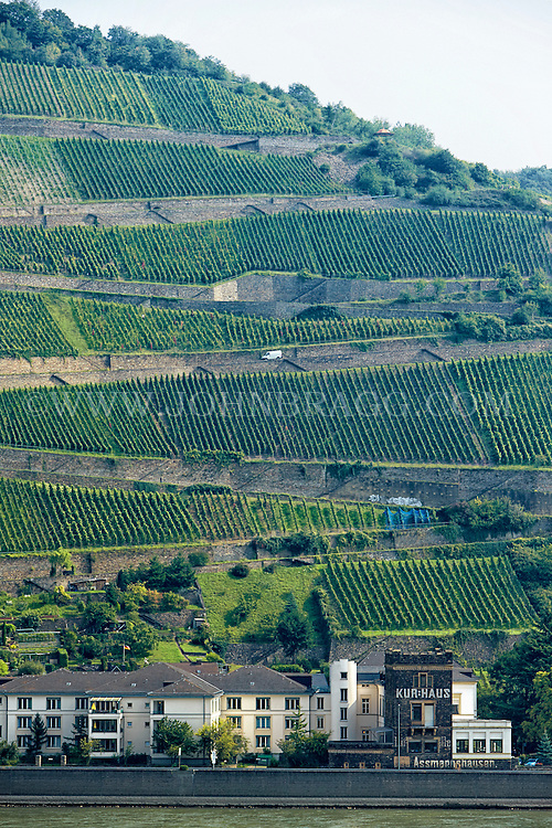 View of a wine estate, and medical center, Assmanhausen, Germany.