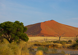 A dune in the Namib- Naukluft National Park, Namibia