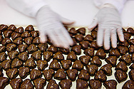 Pralines are posed by hand on a belt and than robotically placed in to the boxes in a chocolate factory in Zurich, Switzerland.
