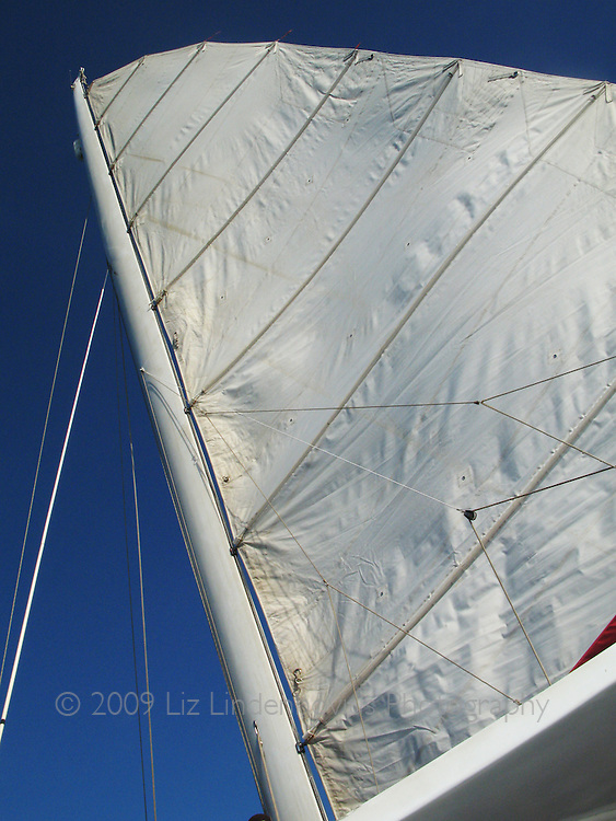 Raised sail on sailboat