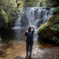 March 14, 2018.<br /> Waipohatu Loop Walk, Catlins, South Island of New Zealand. Tom Bihn bags: Guide's Edition Synapse 25. Photo by Joe Nicholson/Jennifer Buchanan