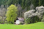 Bauernhaus im Tal Kalte Rinne, UNESCO Welterbestätte Semmeringeisenbahn, Steiermark, Österreich |  Farmhouse in the valley Kalte Rinne, UNESCO World Heritage Site Semmering Railway, Styria, Austria