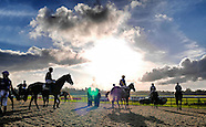Lingfield Races 151114