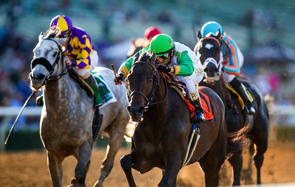 March 07 2015: Wild Dude with Rafael Bejarano up win the San Carlos Stakes at Santa Anita Park in Arcadia CA. Alex Evers/ESW/CSM