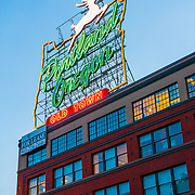 the famous Portland sign - Portland, OR