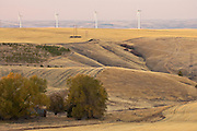 Agriculture and electric generating windmills share the land and air in the Palouse region of eastern Washington, USA