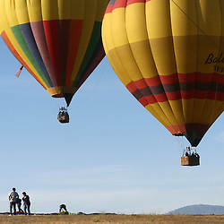 Spectators watch as balloons lift into the air above Temecula's Wine Country during 29th annual Temecula Balloon and Wine Festival, Saturday June. 2, 2012.