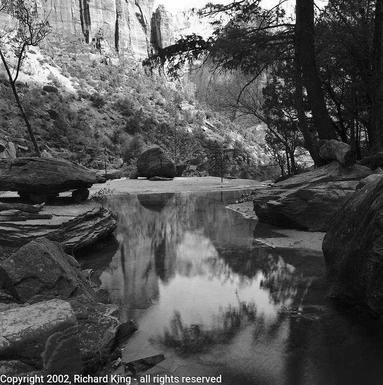 Reflections of The Shepherd, The Great White Throne and Red Arch Mountain in the Middel Emerald Pool, Zion National Park