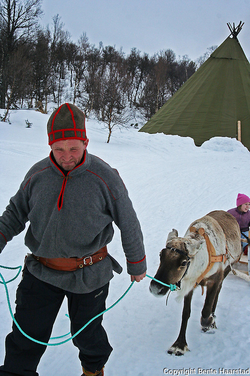 Lars N. Bransfjell are training reindeer the traditional way, and can take children and tourists for a ride. He is belonging to the group of reindeer herders at Saanti Sijte/Essand in Mid-Norway.