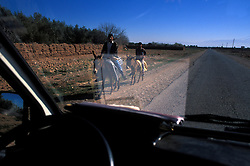 View through a windscreen of donkeys on the road between Marrakech and Tamaslouht, Morocco.