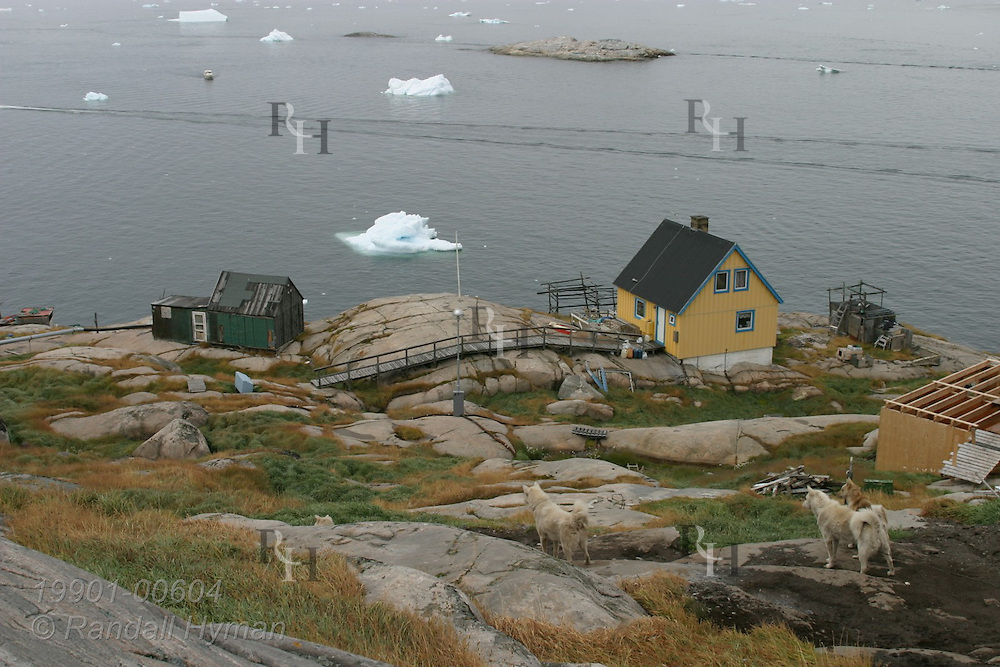 Danish-style wooden homes perch along rocky shore overlooking Disko Bay iceberg chunks at Ilulissat, third largest town in Greenland.