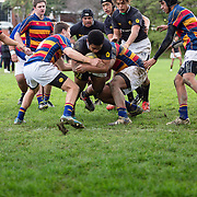 Rugby union game played between Tawa College 1st XV and Wellington College 1st XV.   Wellington won 47-13.