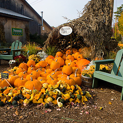 A display of gourds at the Moulton Farm farmstand in Meredith, New Hampshire.