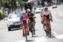 Ziga Groselj (SLO) of KK Adria Mobil, Maximilian Kuen (AUT) of Tirol Cycling Team  during Stage 3 of 24th Tour of Slovenia 2017 / Tour de Slovenie from Celje to Rogla (167,7 km) cycling race on June 16, 2017 in Slovenia. Photo by Vid Ponikvar / Sportida