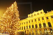 Christmas market at Schönbrunn castle, Austria, Vienna, 13. district, Schoenbrunn