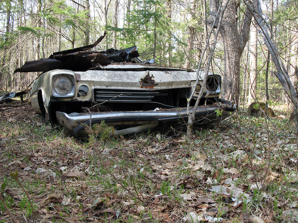 April 27, 2008 - Ottawa, ON. Old Chevrolet abandoned in the woods.