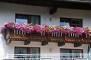 Austria, Tyrol, Zillertal, Mayrhofen. Flowers in a windowsill