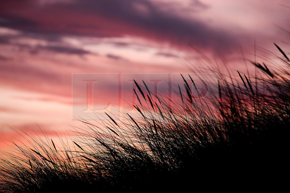 © Licensed to London News Pictures. 25/01/16<br /> Marske-by-the-Sea, UK. <br /> <br /> Early morning clouds over sand dunes at Marske by the Sea turn red as they are dramatically lit by the sunrise.<br /> Remnants of Storm Jonah are expected to bring weather disruption to parts of the country over the next few days.<br /> <br /> Photo credit : Ian Forsyth/LNP