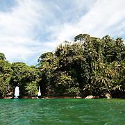 Isla Pajaros. Bocas del Toro, Panama