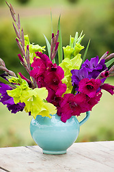 Gladiolus collection in a turquoise jug