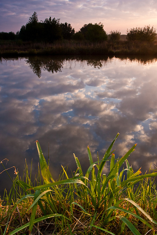 Patchy clouds are reflectd on the Vouga river canals in the north of Portugal, near the city of Aveiro