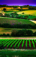 &ldquo;Multi-layered vineyards near Montepulciano along the Val d'Orco&rdquo;&hellip;<br />