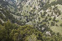 Cretan Landscape near Imbros, Crete