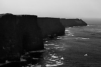 Cliffs of Moher along west coast of Ireland. Copyright 2019 Reid McNally.