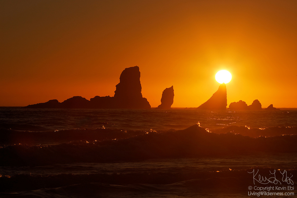 """The setting sun seems to be balanced on one of """"nose"""" of one of the Sea Lion Rocks, a series of sea stacks off the northern Oregon coast. The rocks were formed by ancient lava flows, which have since been eroded by constant pounding from Pacific Ocean waves. These sea stacks are located near Ecola State Park, north of Cannon Beach, Oregon."""