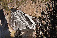 Gibbon Falls, an 84 foot drop on the Gibbon River.  Yellowstone National Park, Wyoming, USA.