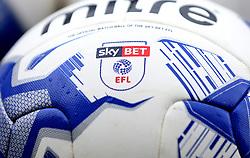 Sky Bet EFL Football's - Mandatory by-line: Robbie Stephenson/JMP - 16/05/2017 - FOOTBALL - Madejski Stadium - Reading, England - Reading v Fulham - Sky Bet Championship Play-off Semi-Final 2nd Leg