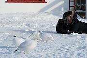 Hríseyjarferð 1 mars 2009.