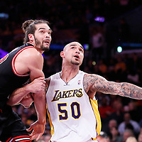 09 February 2014: Chicago Bulls center Joakim Noah (13) vies for the rebound with Los Angeles Lakers center Robert Sacre (50) during the Chicago Bulls 92-86 victory over the Los Angeles Lakers at the Staples Center, Los Angeles, California, USA.