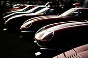 August 16-20, 2017: Ferrari's lined up at Quail Motorsport Gathering
