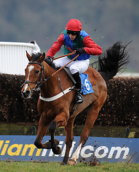 Race Winner Ballyegan ridden by Liam Heard jumps the last during the Bell Inn At Watchet Handicap Chase (Class 5) (5YO plus)  - Photo mandatory by-line: Harry Trump/JMP - Mobile: 07966 386802 - 09/03/15 - SPORT - Equestrian - Horse Racing - Taunton Racing - Taunton Racecourse, Somerset, England.