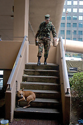 30 August, 2005. New Orleans Louisiana. Hurricane Katrina aftermath. <br /> A national guard soldier brings an MRE and water to a dog left tied to the exterior of the Superdome where approximately 20,000 storm evacuees are housed. Evacuees were not permitted to bring their pets inside the Superdome. Many had to be abandoned.<br /> Photo Credit: Charlie Varley/varleypix.com