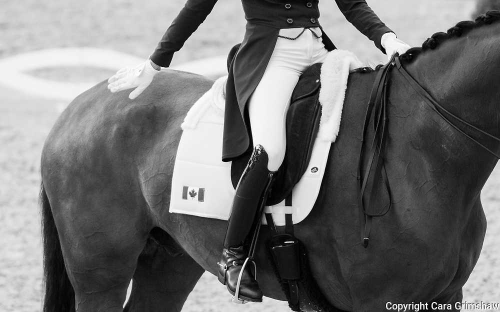 BRITTANY FRASER (CAN) rides All in in the Grand Prix CDI4* Dressage during the Havens Horsefeed Prize at CHIO Aachen, Germany July 19 2017
