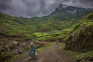 Most transportation in the Ethiopian highlands is by foot through fields of the indigenous grain, teff, that are so vividly green as to resemble backlit stain glass.  This year has seen unusually heavy rains that have experts describing the Northern Ethiopian Highlands as having estimated food insecurity levels categorized as high to extreme.