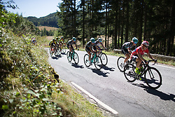 Riders dig deep on second KOM climb of the 117,5 km third stage of the 2016 Ladies' Tour of Norway women's road cycling race on August 13, 2016 between Svinesund, Sweden and Halden, Norway. (Photo by Balint Hamvas/Velofocus)