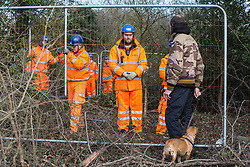 Harefield, UK. 7 February, 2020. An activist with a small dog observes HS2 engineers in the process of erecting Heras fencing to surround three environmental activists from Extinction Rebellion who have climbed a veteran oak tree close to the Harvil Road wildlife protection camp in order to try to protect it from felling. HS2 are expected to try to fell large numbers of mature trees in the immediate vicinity over the weekend even though the high-speed rail link is still awaiting Boris Johnson's approval.