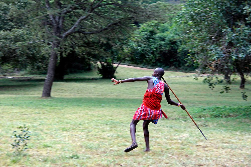 Africa, Kenya, Masai Mara. Maasai Warrior demonstrates hunting and spear-throwing skills for visitors to Cottar's 1920's safari Camp.