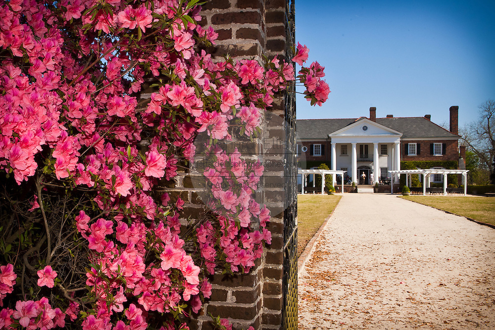 Boone Hall Plantation in Charleston, SC.
